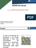 tensões devido ao peso proprio.pdf