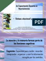 Sistema Atencional y Memoria