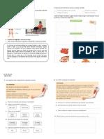 Guía Los Músculos