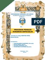 Monografía Sumario Especial