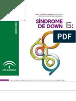 Guía sobre síndrome de Down