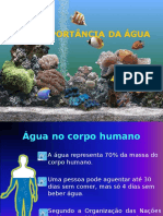aimportanciadagua-120629095112-phpapp02