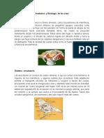 Anatomía  y fisiología  de las aves.docx