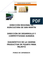 Diagnóstico Cadena Productiva de Palmito.docx