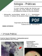 Lâminas Prova Pratica - Prova Parasitologia