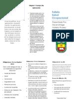 Folleto de Salud Ocupacional PDF