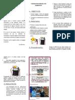 156139981-60390635-Triptico-de-La-Fruta-Electrica.doc
