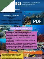 arrecifes de coral.pptx