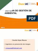 1 1 1 Introduccion Sistema de Gestion Ambiental