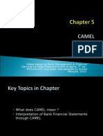 Chapter 5 Banking - CAMEL NEW