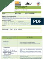 Opd Planificacion Secundaria Ensayos Imprimir