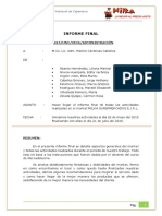Informe Final Milka 2015