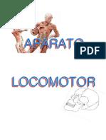 APARATO-LOCOMOTOR1.pdf