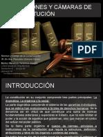 Intstituciones y Camaras de La Constitucion