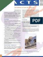 Factsheet 15 - Prevencao de Acidentes No Sector Da Construcao