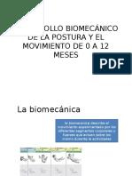 Desarrollo Biomecánico de La Postura y El Movimiento