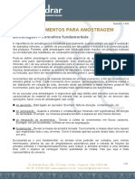 amostragem ENGENDRAR.pdf