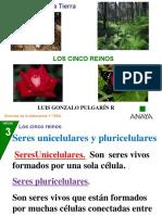 Los Cinco Reinos de La Naturaleza