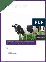 IAGV_E1_Unidad1.pdf