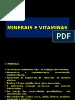 MINERAIS E VITAMINAS.pptx