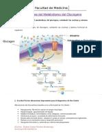 Seminario...Alteraciones-del-Metabolismo-del-Glucógeno.docx