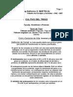 CultivoTrigo.pdf