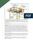 Tarea Taller Motores (2)