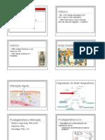 Aines 2015 PDF