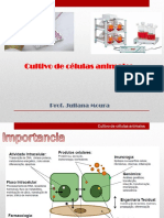 Cultivo de Células Animales 2014.2