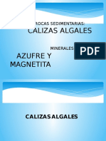 Calizas Algales y Magnetita - Copia