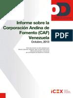 Informe Sobre La Corporación Andina