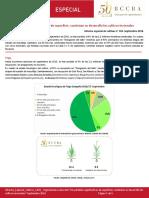 Informe Especial de Cultivos N°103