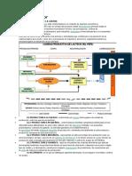 cadena-productiva-en-el-peru.docx