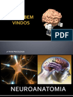 Aula Neuroanatomia Psicologia