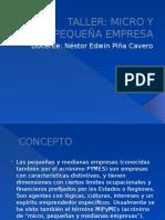 Micro y Pequeña Empresa (Piña) 1