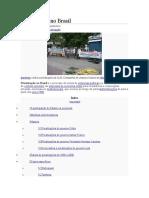 Privatização No Brasil(0)[1]