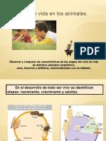 CIENCIAS NATURALES - POWER POINT 2 - 2 BASICO.pptx