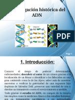 }ADN.ppt