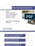 PPT Keanekaragaman Makroozobentos
