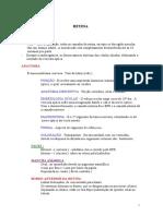 retina.pdf