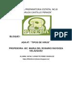 ADA 8 TICS.docx