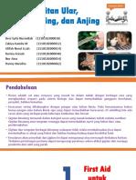 gigitanularkucingdananjing-131226103601-phpapp02