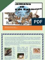 Album de Animales en Peligor de Extinción