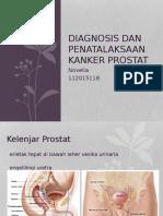 Referat Kanker Prostat(1)