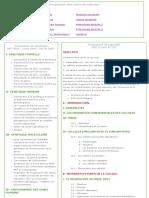 Programme 1ère Année de Médecine Alger