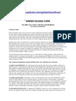 Green Iguana Care