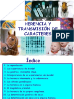 T2 HERENCIAYTRANSMISION DE CARACTERES.ppt