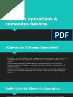 Sistemas Operativos & Comandos Básicos