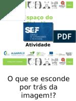 01-Atividade SEF - VF.pptx