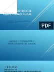 EDAFOLOGIA.pptx